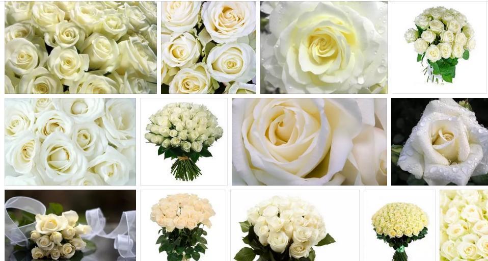 Приснились белые розы - толкование сна по сонникам
