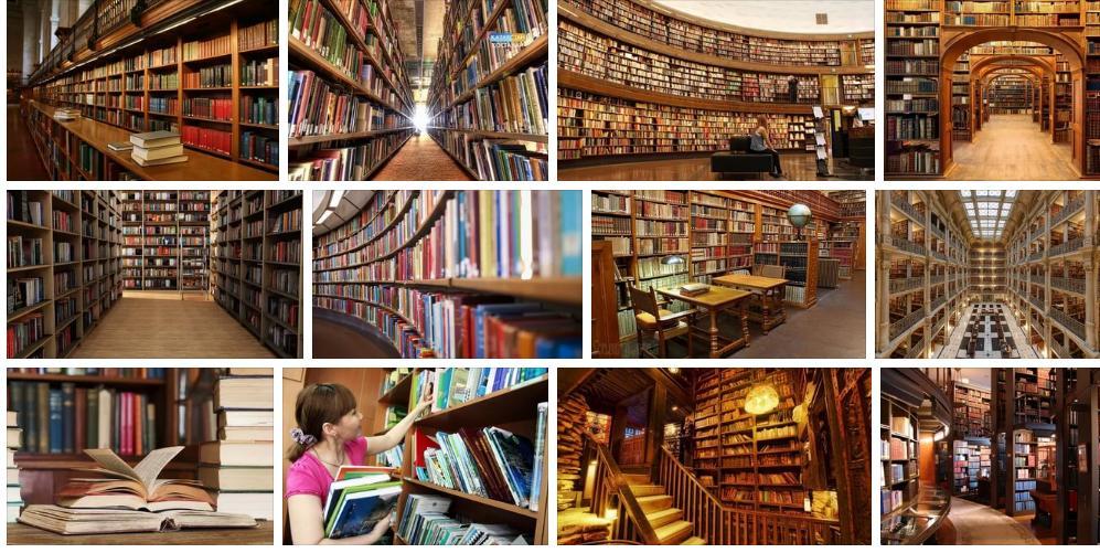 Приснилась библиотека - толкование сна по сонникам
