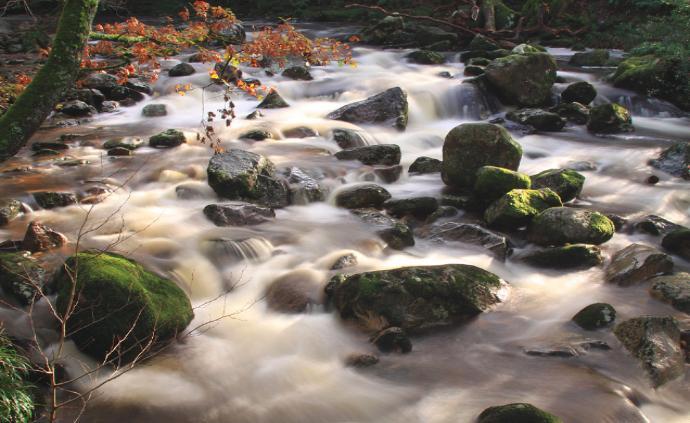 Приснилась бурная река - толкование сна по сонникам