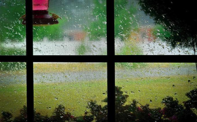 Дождь за окном – толкование сна по сонникам