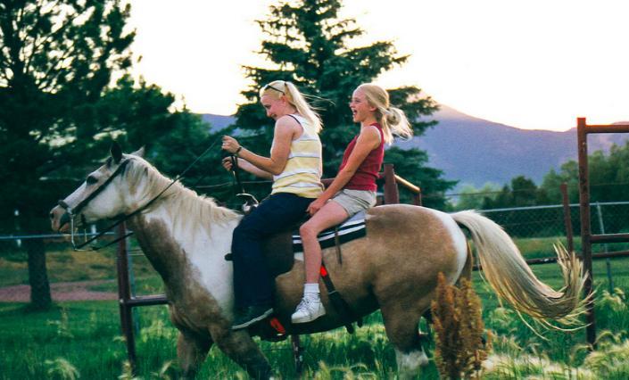 Ехать на лошади - толкование сна по сонникам