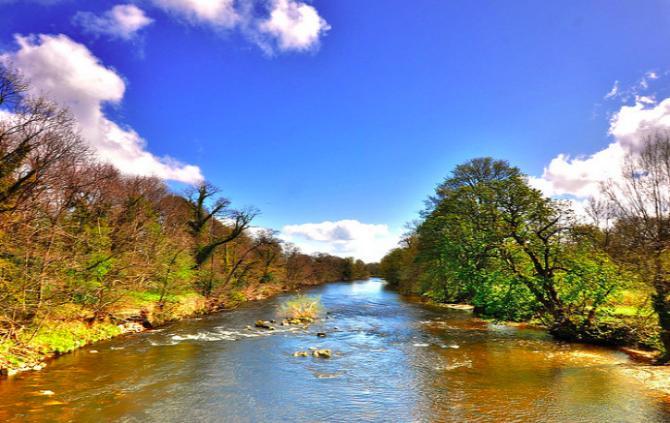 Приснилась вода в реке – толкование сна по сонникам
