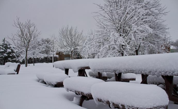 Приснилось выпал снег – толкование сна по сонникам