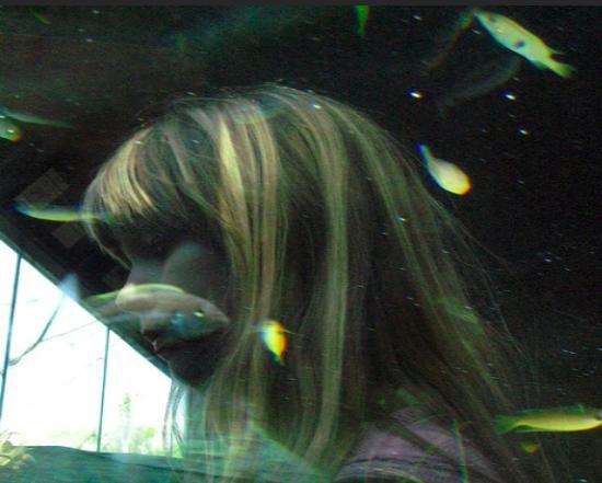 Женщине живая рыба- толкование сна по сонникам