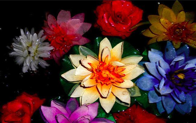 Искуственные цветы - толкование сна по сонникам